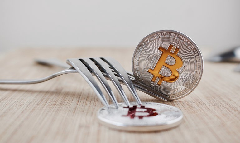 Cryptocurrency and Hard Forks
