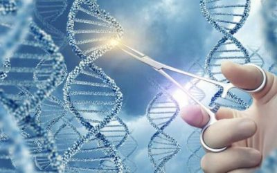 The Power of Stem Cell Therapy