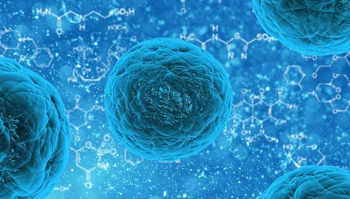 The Future of Stem Cell Therapy